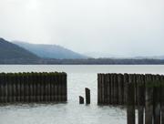 Clear Lake Pilings