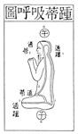 Secret of the Golden Flower, illustration of energy channels
