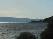 Sailboats on Clear Lake